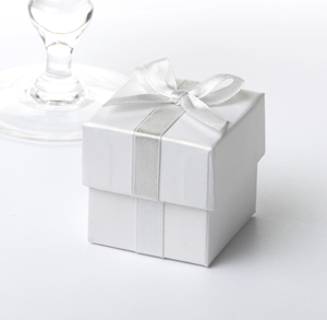 White Favour Box with Silver Ribbon (10)