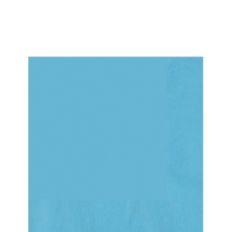 Caribbean Teal Lunch Napkin (20)