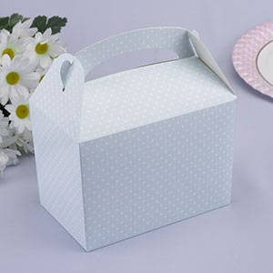 Pale Blue Polka Dot Party/Lunch Box (8)