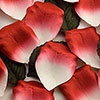 Red & White Paper Rose Petals